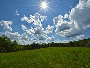 The sun shines bright over the E. Lucy Braun Lynx Prairie Preserve in summer.