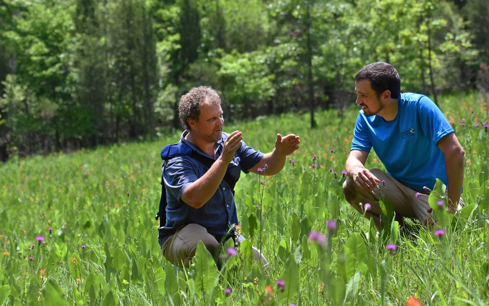 Scientists use the Edge of Appalachia Preserve as an outdoor laboratory to study and research. Cincinnati Museum Center staff & TNC staff work together to manage the preserve.