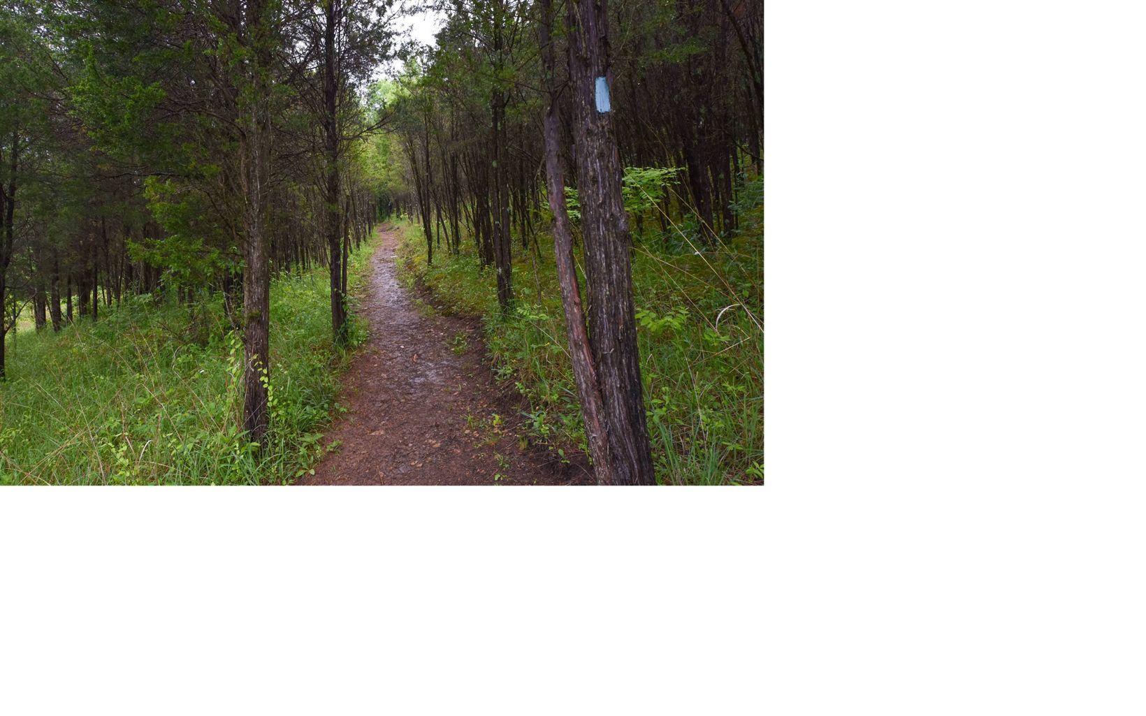 Edge of Appalachia, Portman Trail