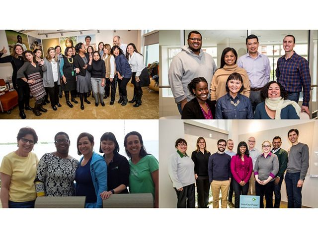 Four photos of groups of people, in office settings.