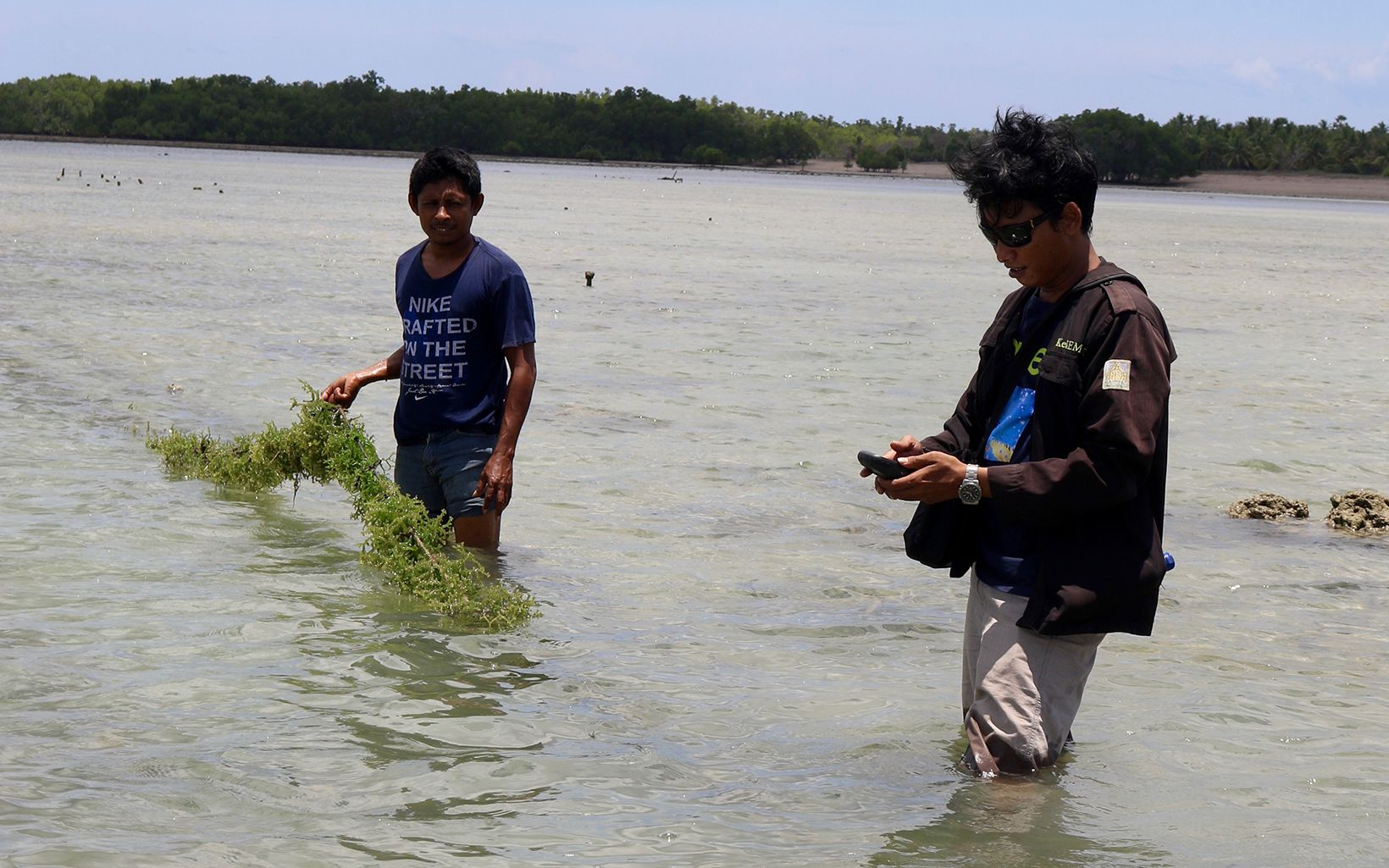 Indonesia seaweed spatial planning
