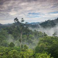 East Kalimantan, India