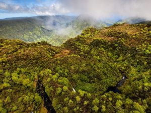 Aerial view of forests and mountains on Maui.