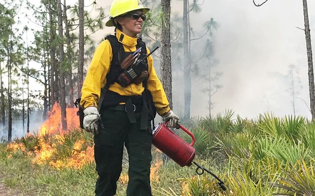 Prescribed fire practitioner manages a fire at Disney Wilderness Preserve in Central Florida.
