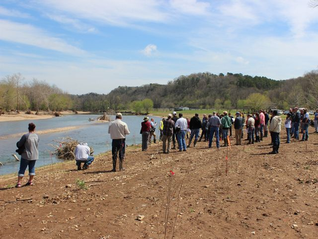 large group of people stand along the new streambank