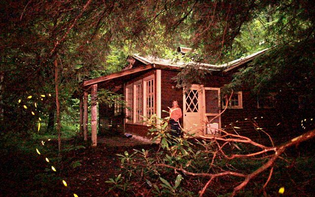A woman stands in front of a cabin in the woods.