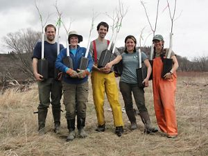 TNC staff with American elm seedlings