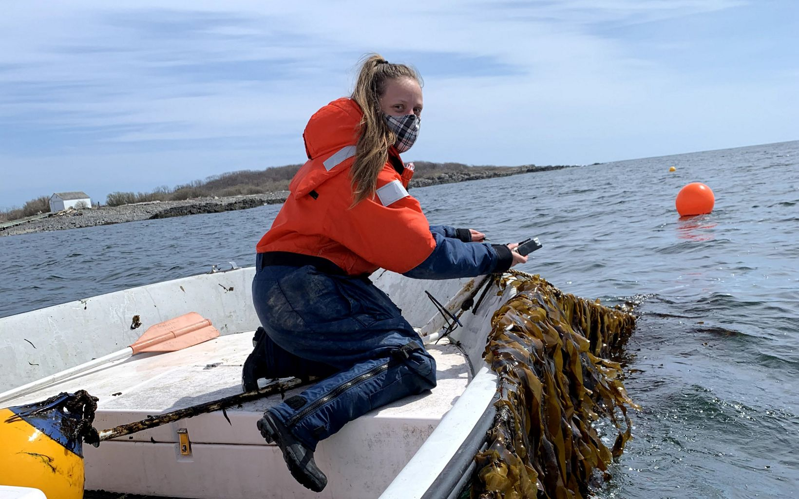 A woman in a boat holds a line with kelp growing on it.