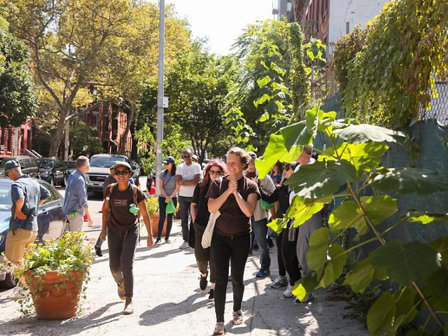 engages and empowers stewards to care for local trees in Brooklyn, New York.