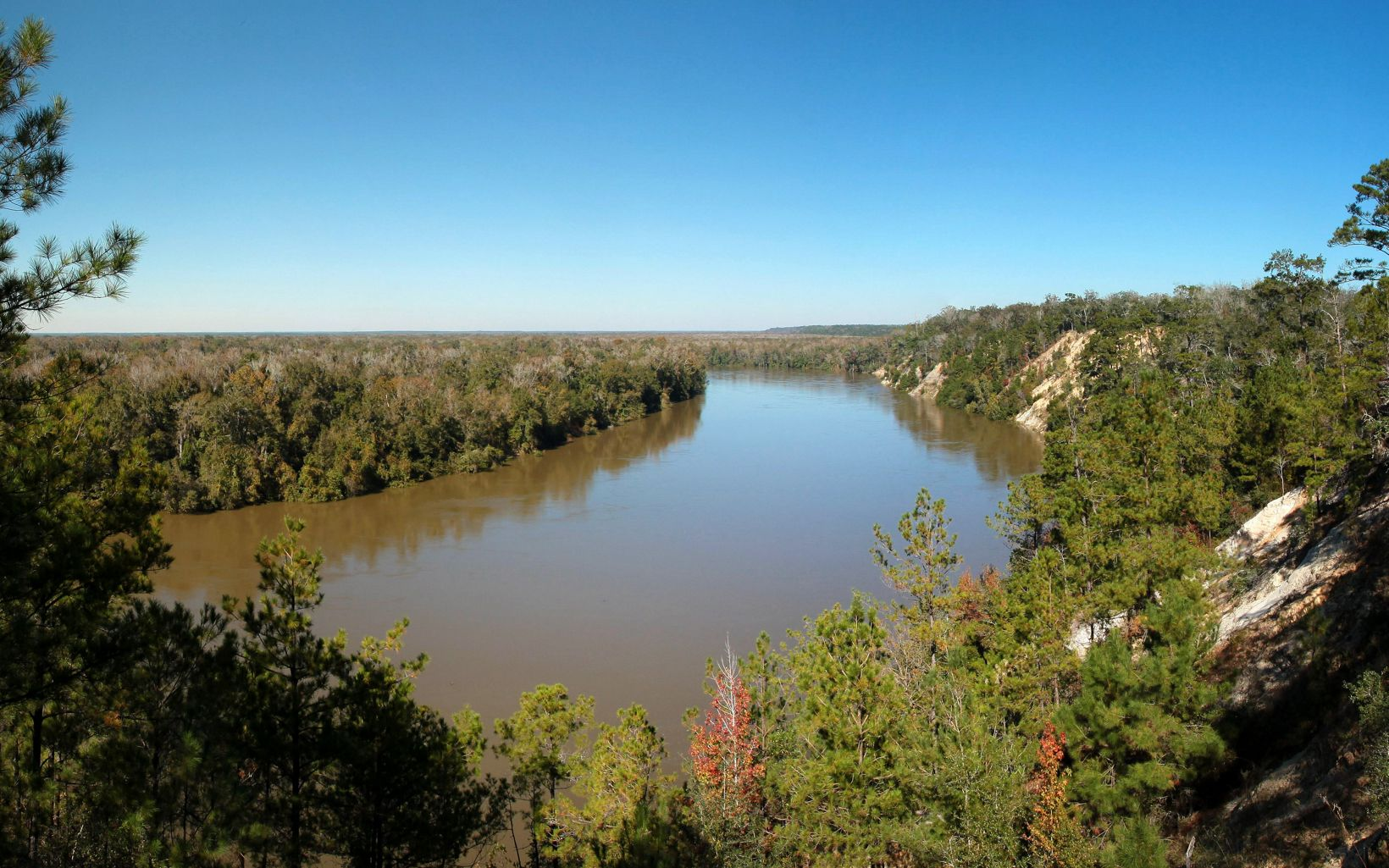 Apalachicola Bluffs and Ravines Preserve in Florida.