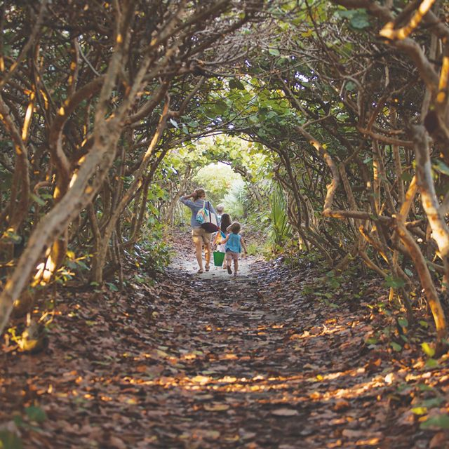 A woman with three children walks away down a dirt pathway through a tunnel of verdant foliage.
