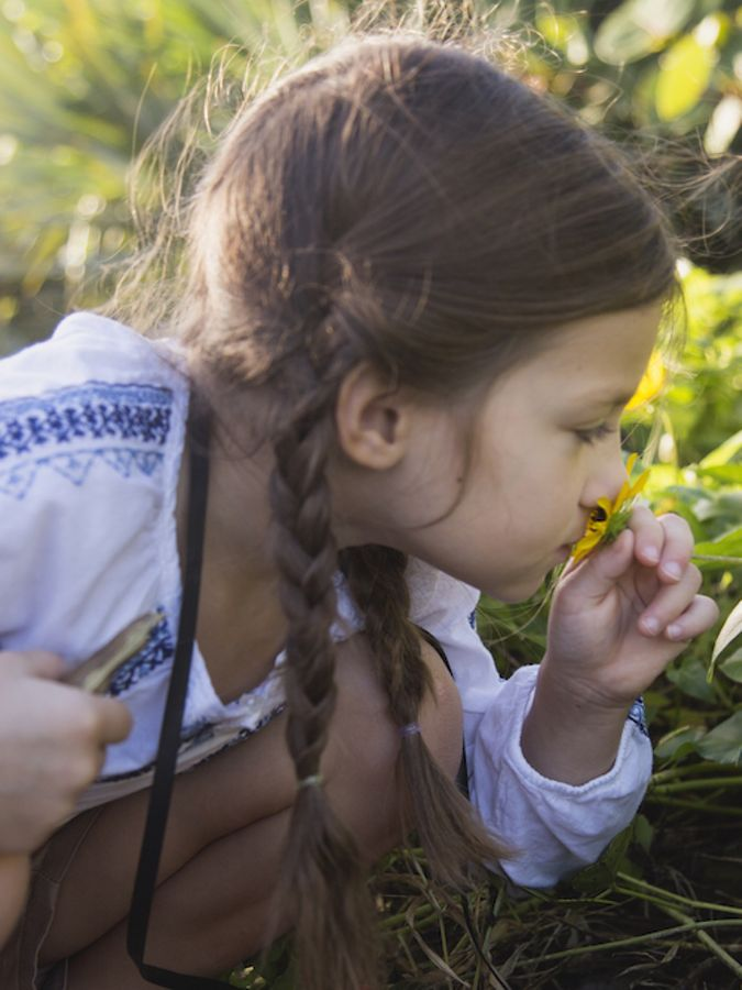 A child with two braids smelling a yellow flower.