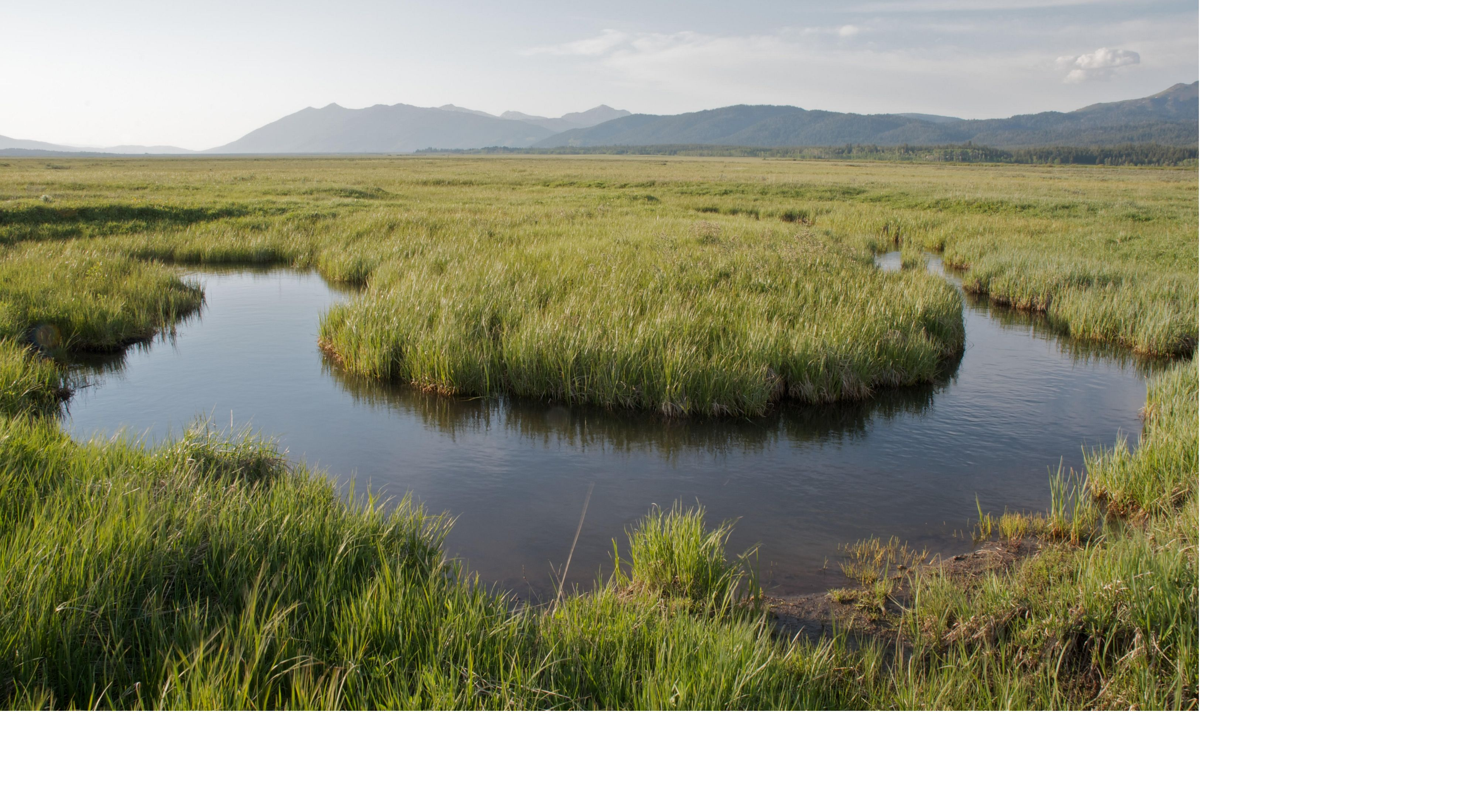 A meandering creek running through grassy fields with hills in the background.