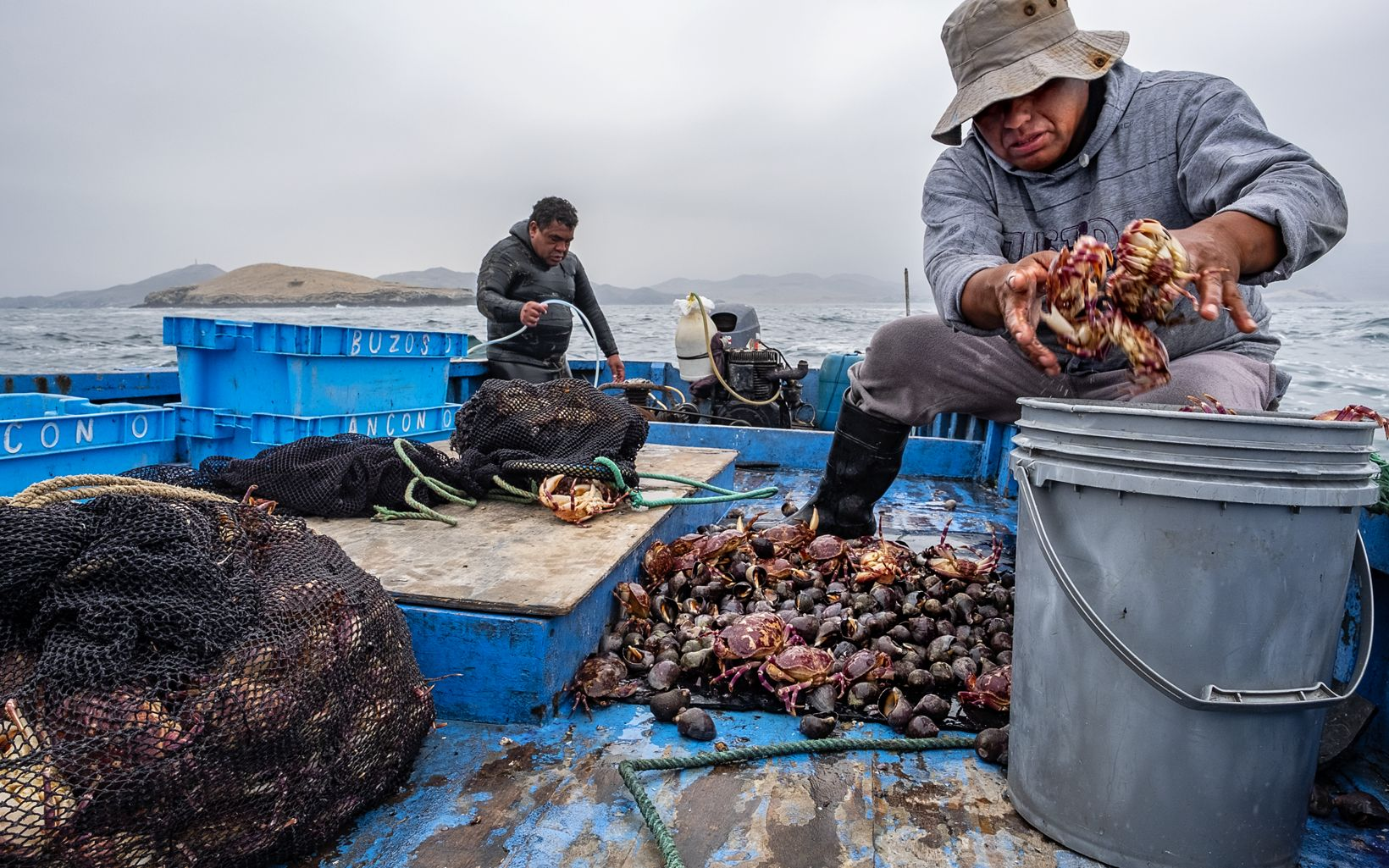 Jose Garrido sorts a catch of crabs and black rock snails. He and Hector Samillan also fish for limpet and sea cucumber.