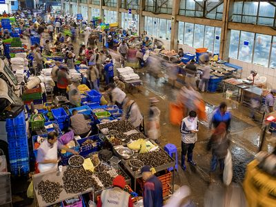 an aerial view of a busy indoor fish market