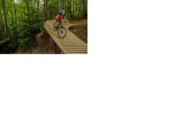 A mountain biker rides a trail