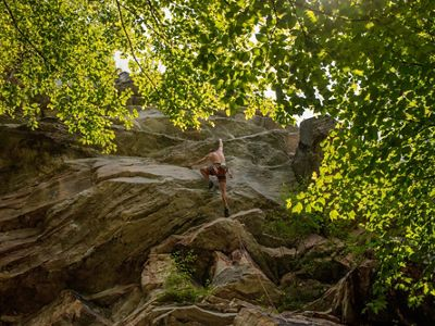 a rock climber scales a rock face in a forest