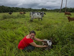 Mercedes Murillo Gutierrez's farm in Meta, Colombia