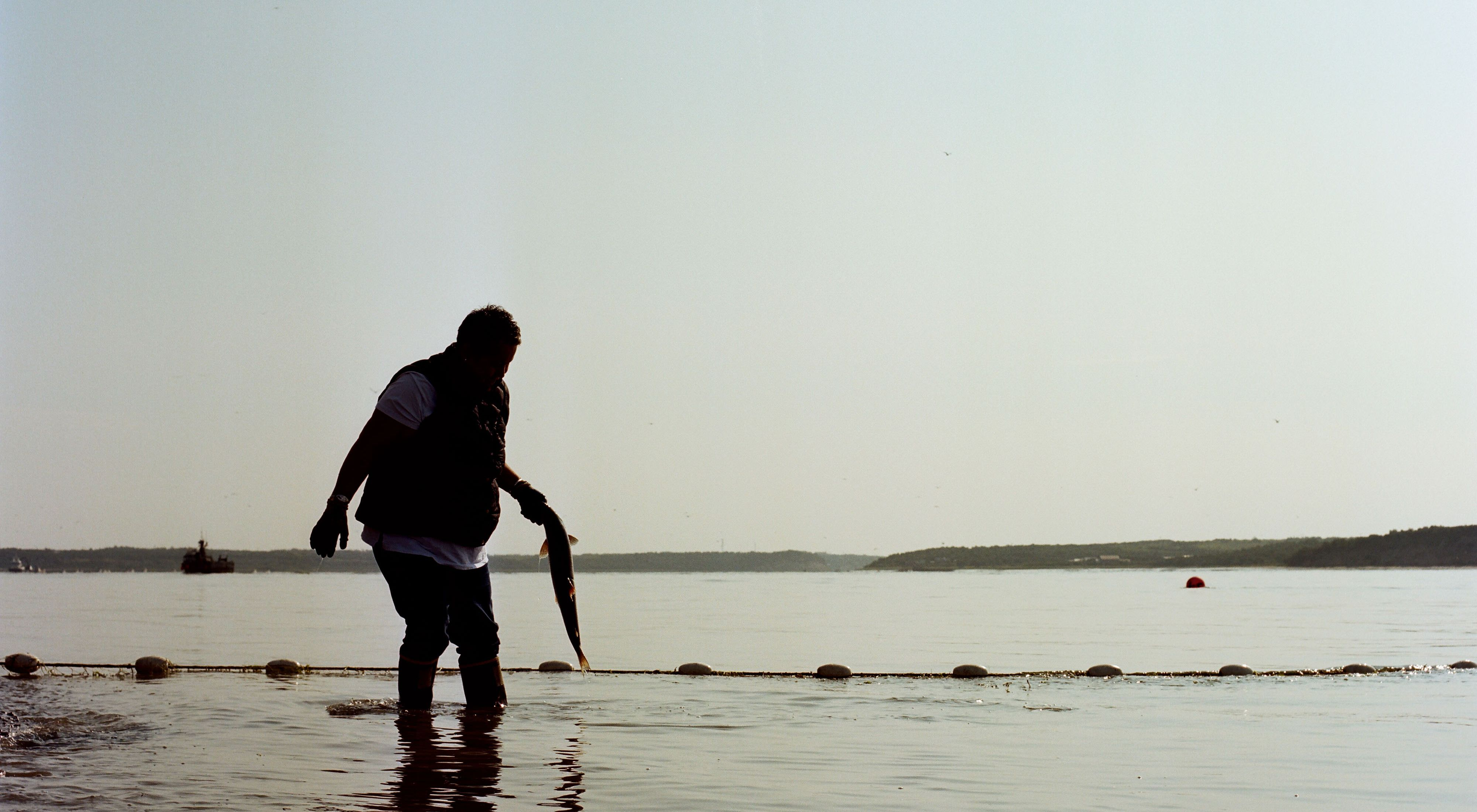 woman wades in water with fish in hand, silhouetted against a body of water with ships and buoys in distance