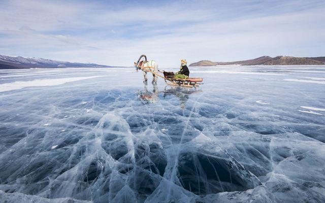 A reindeer pulls a sled on Mongolia's massive Lake Hövsgöl