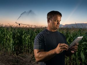 A farmer in a field uses a tablet to control irrigation
