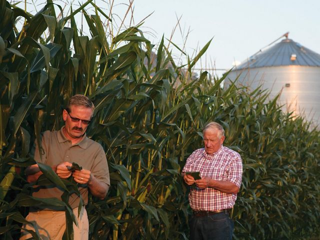 Farmers stand next to a corn row with a silo in the background