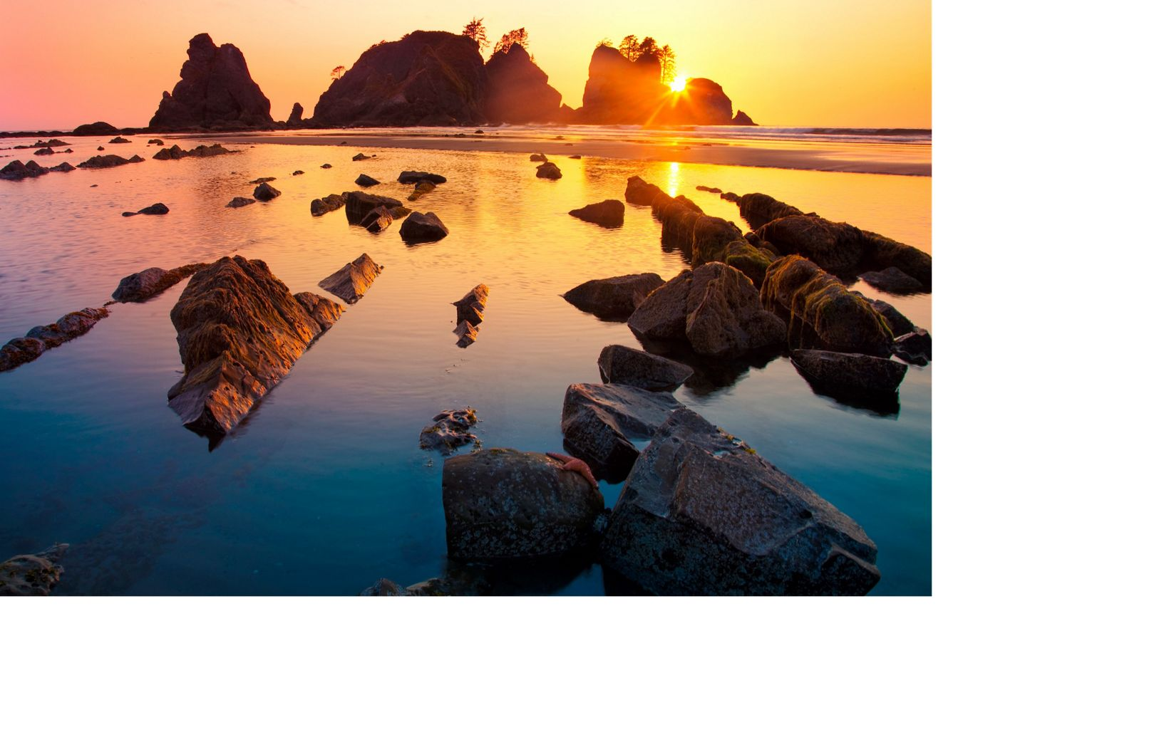 Point of Arches at Shi Shi Beach in Olympic National Park, Washington.
