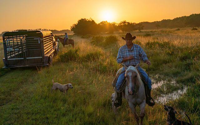 Jinetes a caballo en ranchland