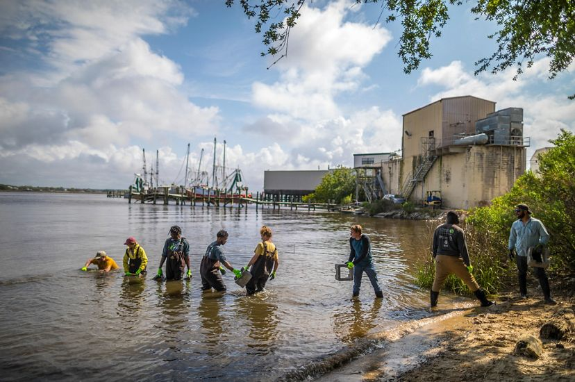 Members of GulfCorps create a living shoreline that will become a home to oysters and other water creatures along the last natural shoreline in Biloxi, Mississippi.