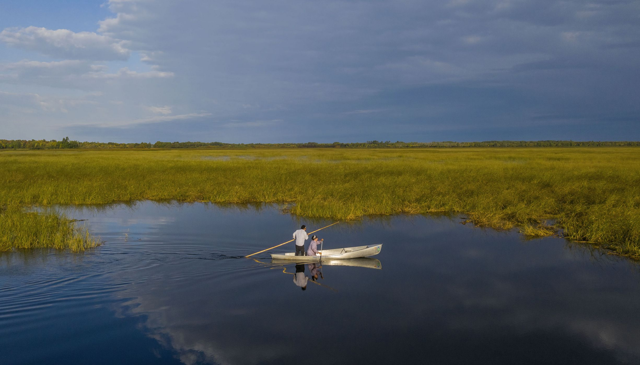 Two people in a canoe float on a lake surrounded by tall wild rice.