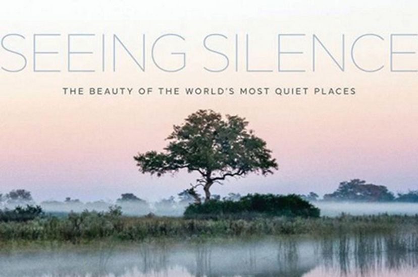 book cover for Seeing Silence.