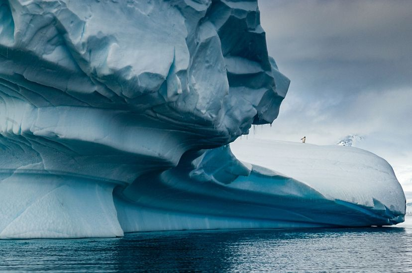 blue-white ice form stretches out over icy water with a single penguin poised near the edge of the ice over the water