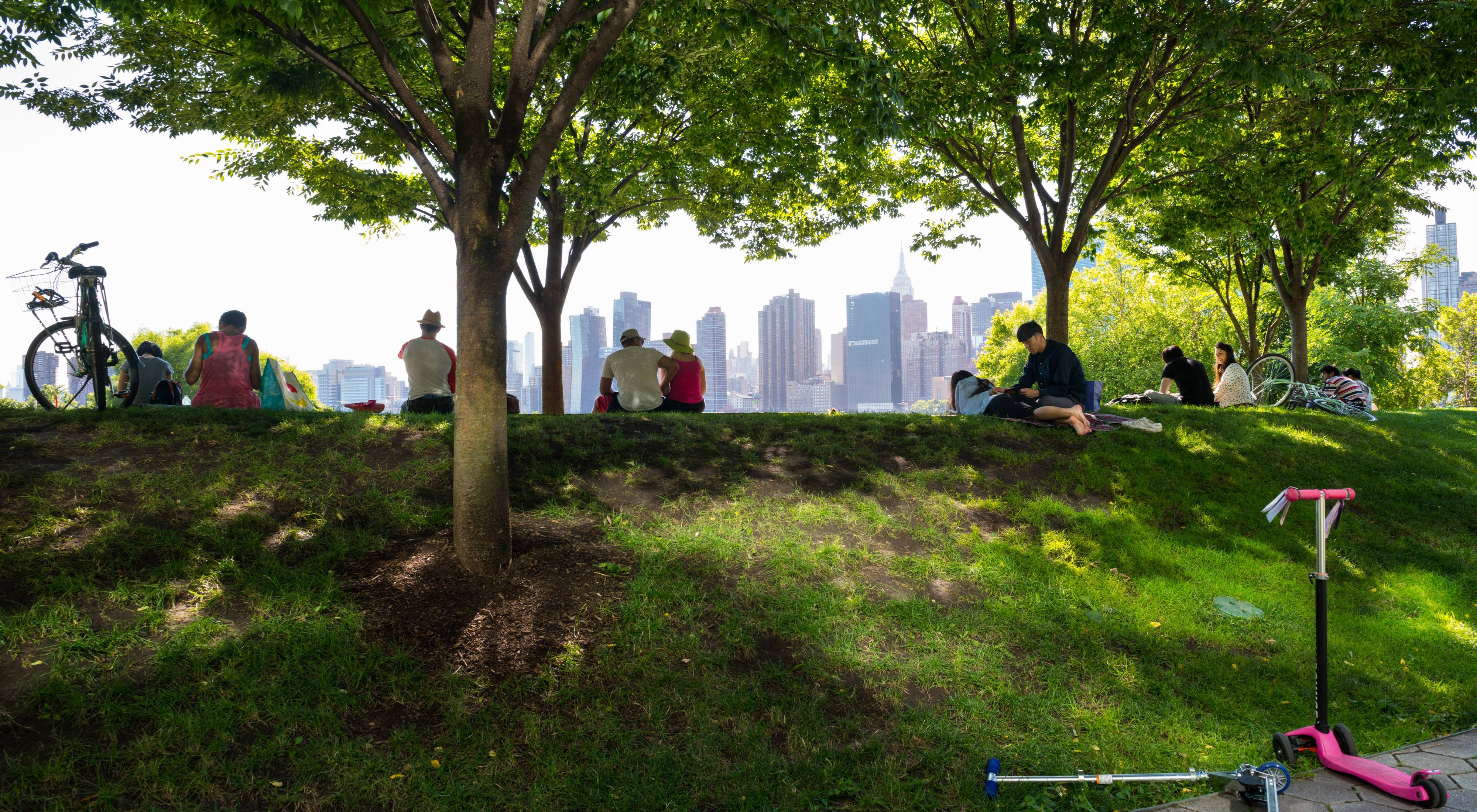 People sit under trees looking at the New York City skyline.
