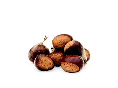 photo of several brown chestnuts photographed with a white background