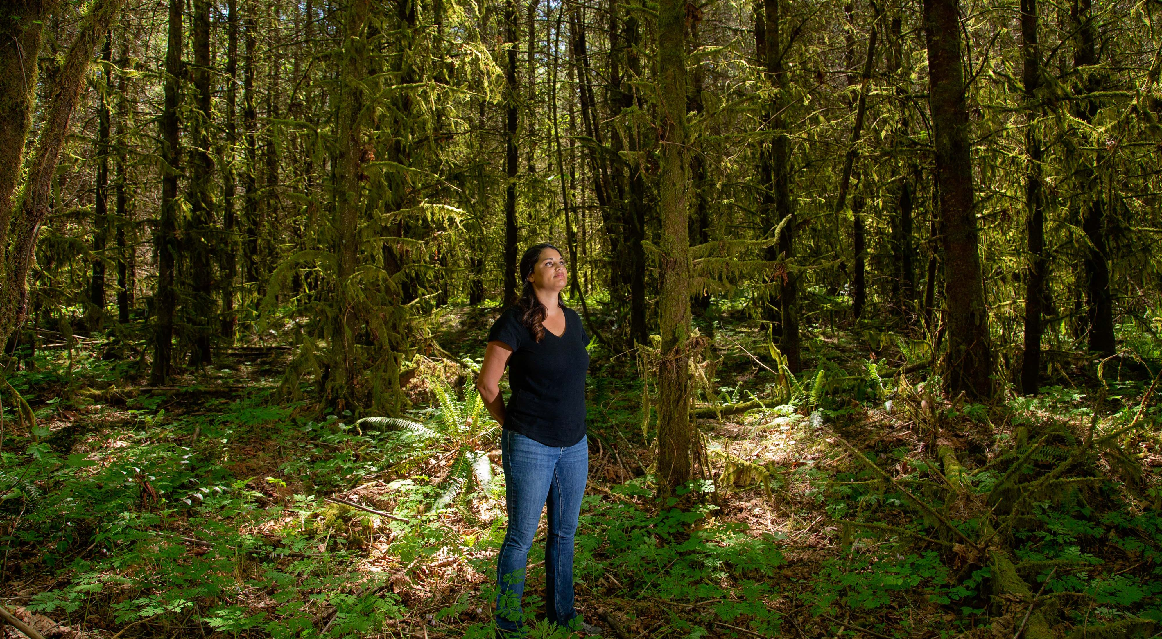 Kenison stands with hands behind her back and head raised in dense green forest in a column of sunlight