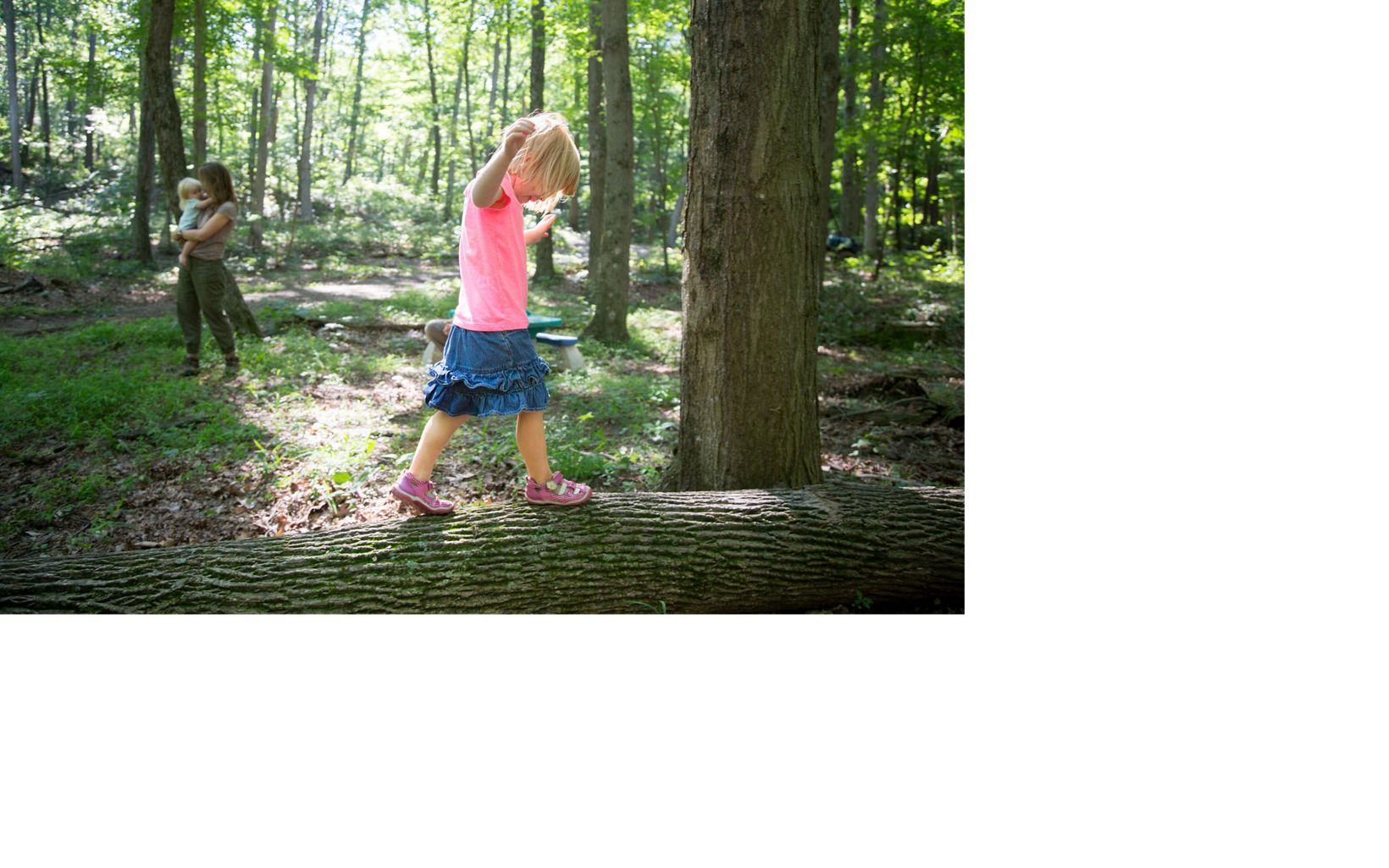 Josh Parrish's wife, Amanda and their children Anna, 4, and Evelyn, 2 years old, in their family forest, Pennsylvania.