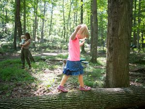 A young girl wearing a pink top and blue skirt balances on a fallen log in the middle of a sun dappled forest.