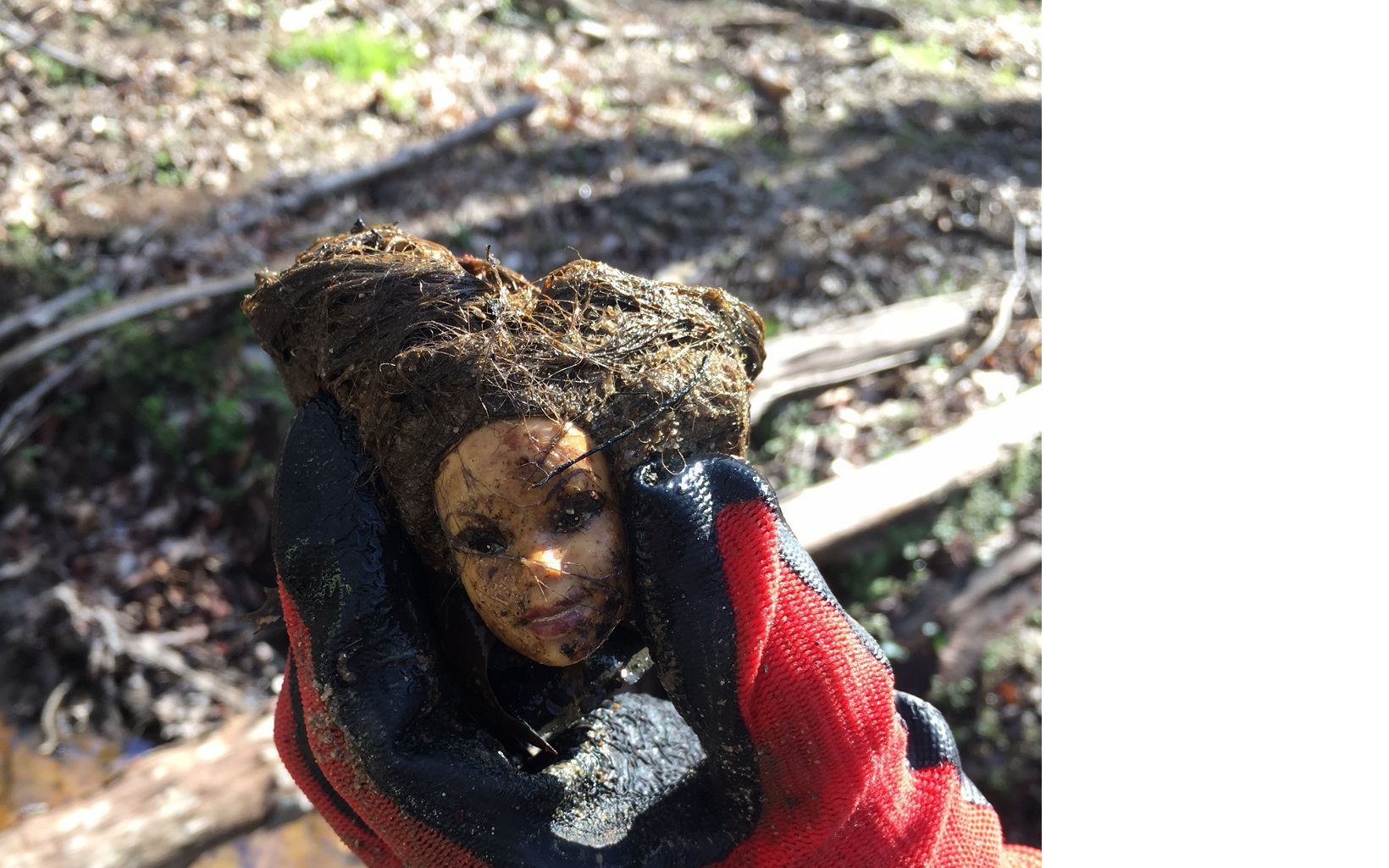 "A disembodied Barbie head was just one of the ""finds"" at Huntley Meadows Park."
