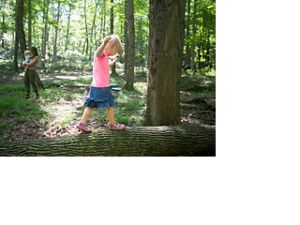 Young girl balances on white ash trunk