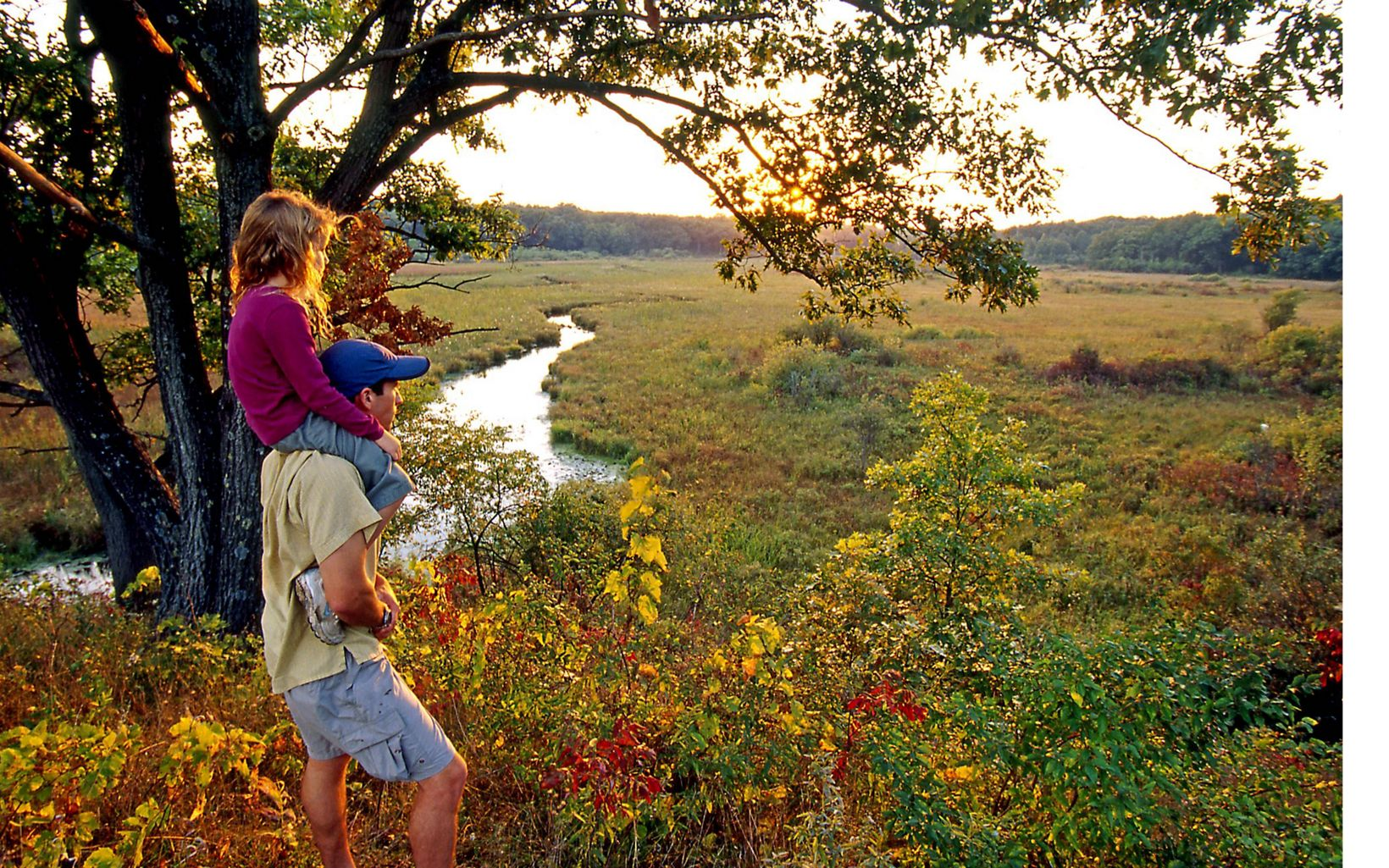 Father with young daughter on shoulders under tree looking out over wetlands in the fall.
