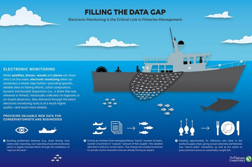 Electronic Monitoring is the Critical Link in Fisheries Management.