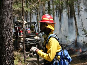 A man at a controlled burn.