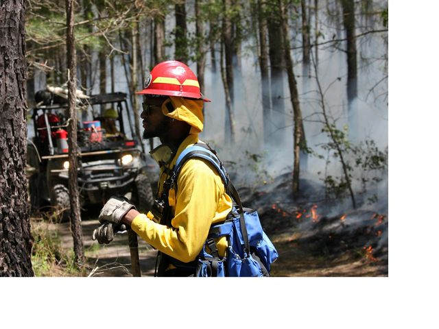 An AmeriCorps crew member watches the fire line during a controlled burn at Piney Grove Preserve, Sussex Co., Virginia.