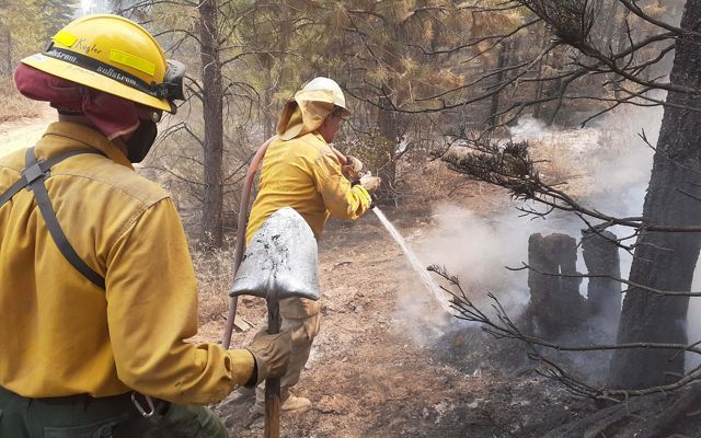Firefighters at work on the Bootleg Fire at Sycan Marsh Preserve.
