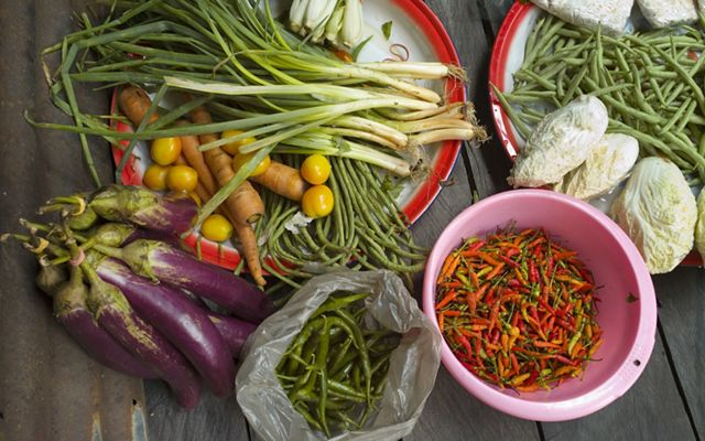 An array of colorful fresh vegetables, including eggplant, scallions, beans and peppers.