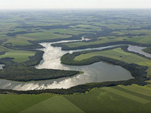 Planted forests border the Sao Francisco Verdadeiro River north of the city of Foz do Iguaçu, Parana state, Brazil.