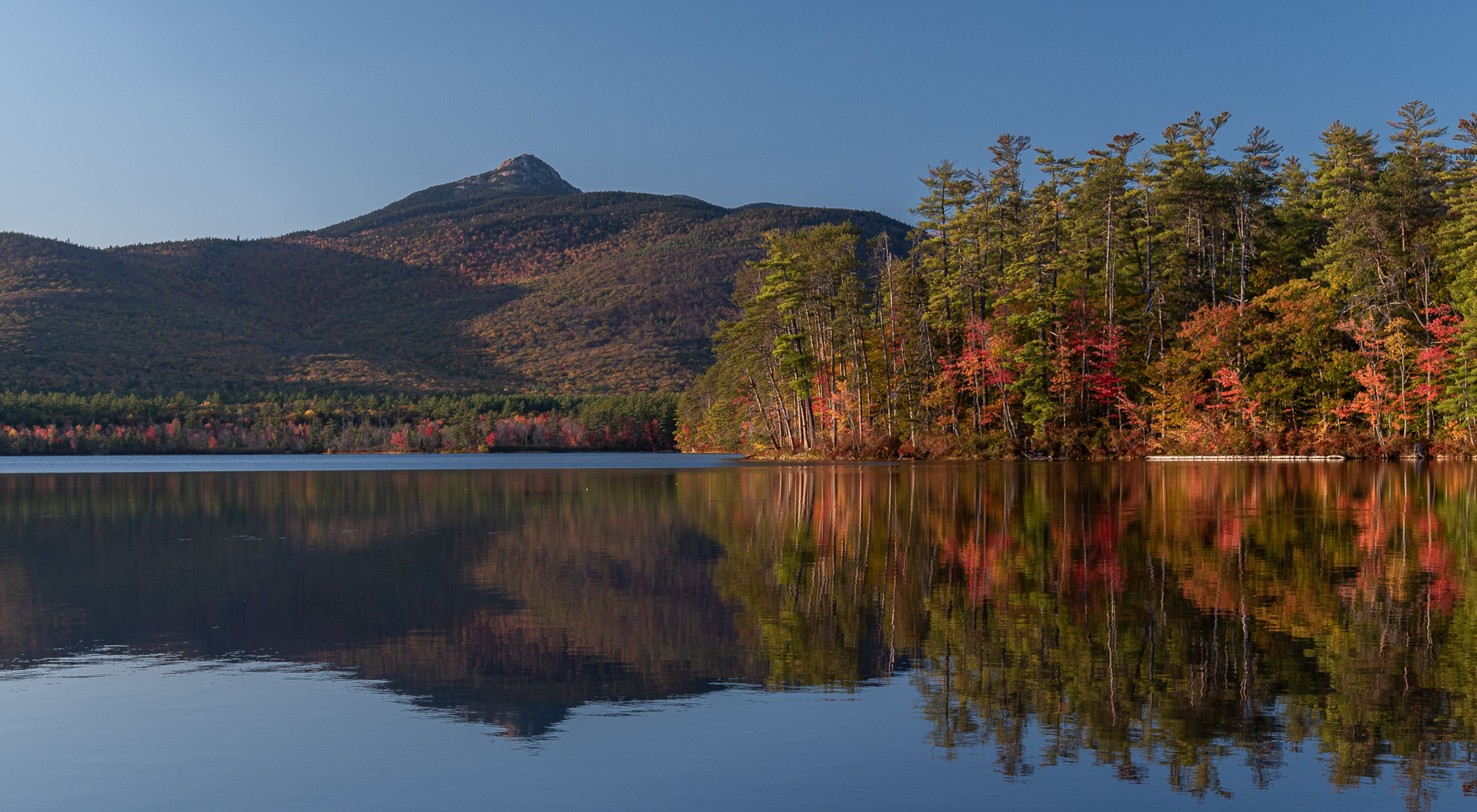 Fall colors in trees along a lake with a mountain in the background.