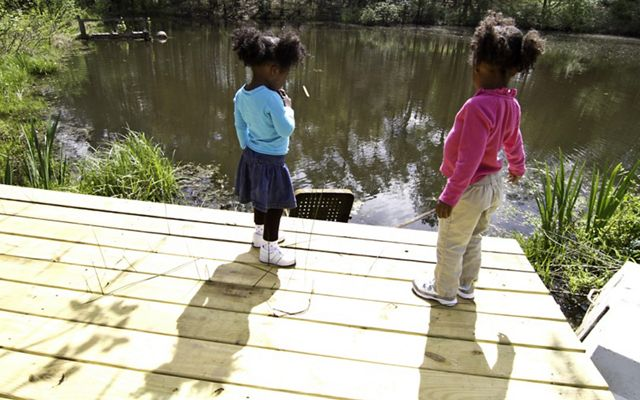 2 toddlers stand on a dock and look out over a creek on a spring day.