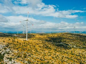 wind turbines dotting yellow rolling hills in Croatia