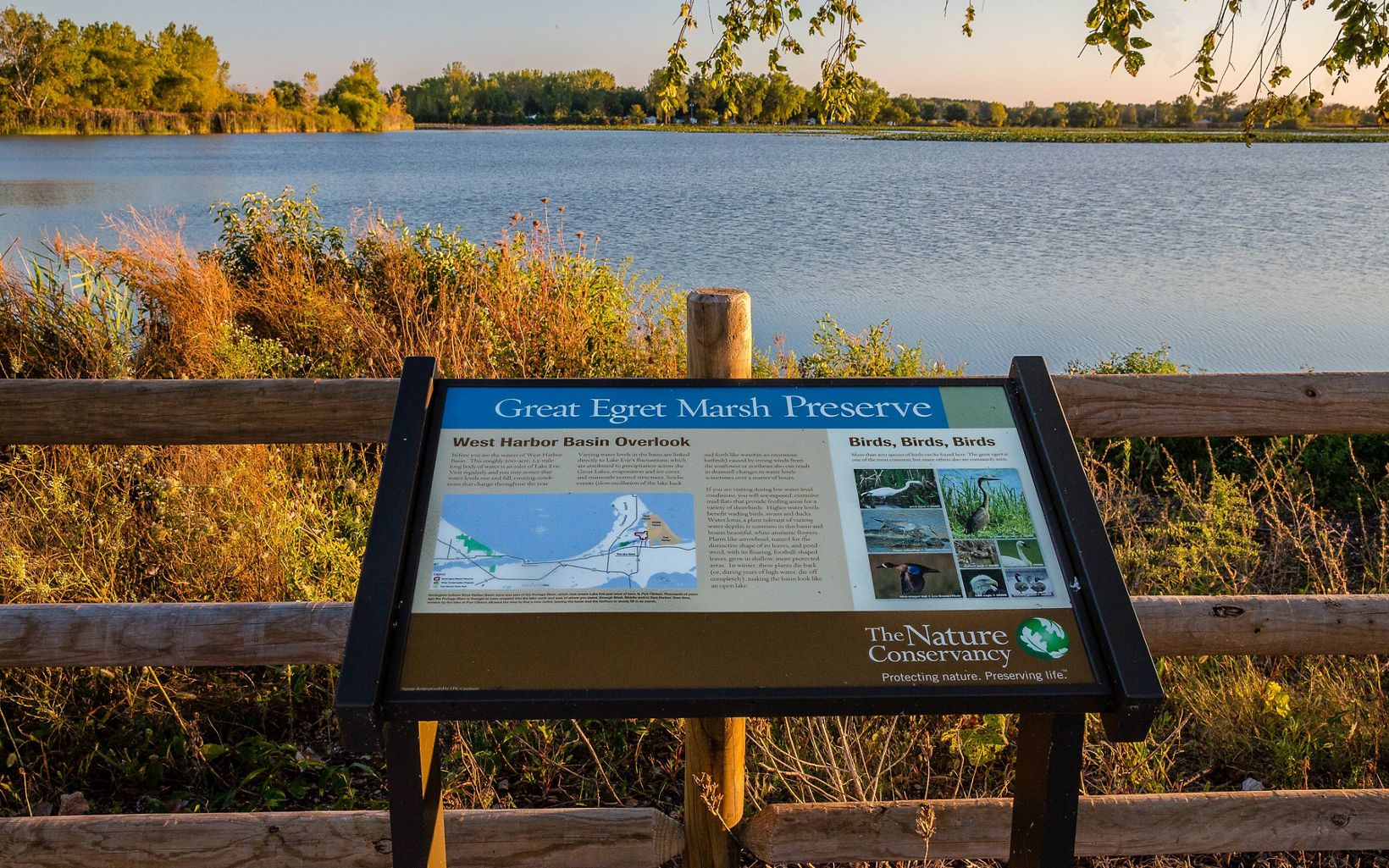 Interpretive signage gives the natural history of the preserve and explains the importance of wetlands.  Learn about the plants and animals that benefit from this preserve.